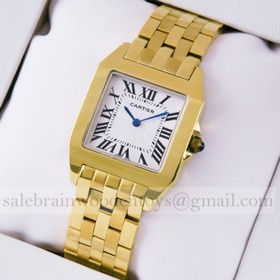 Replica Replica Online Sale Cartier Santos 100 Full 18K Yellow Gold Silver Grained Dial Unisex Watches